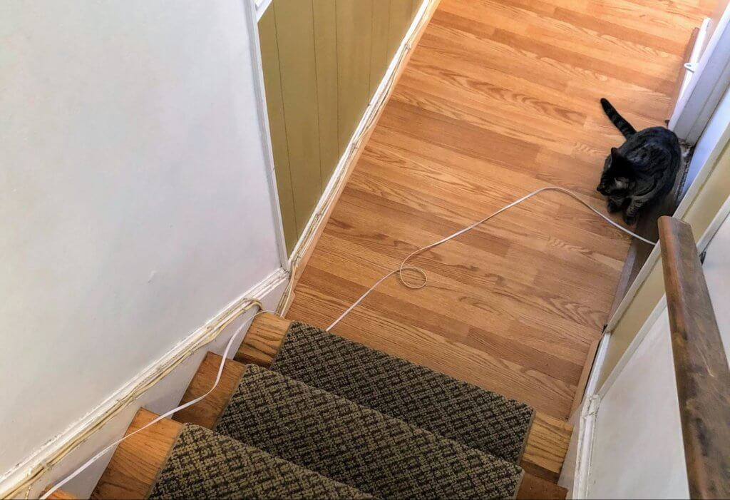 An Ethernet cable is loosely coiled on the floor, coming out of a closet underneath the door, and then running up a few stir steps hugging the wall. The cable is not fastened to anything. A cat is sitting on the floor next to the cable.